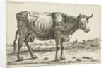Landscape with cow by Cornelis Bisschop