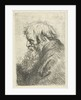 Head of an Old Man by Anthony van Dyck