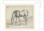 grazing horse left by Jan Dasveldt