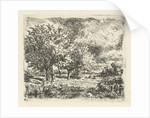 Landscape with willows by Adrianus van Everdingen