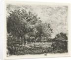 Landscape with willow by Adrianus van Everdingen