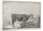Cow standing by a fence by Pieter Gaal