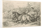 Lying horse for some plants by Johannes Mock