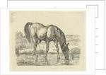 Drinking horse by Jan Dasveldt