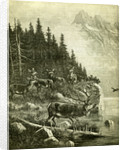 Hunt Austria Deer 1891 by Anonymous