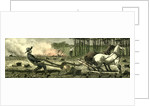 Canada Farm Life 1880 Breaking Up New Ground Stuck in a Root by Anonymous