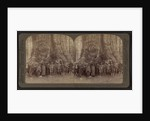 Theodore Roosevelt and his distinguished party, before the Grizley Giant, big trees of California by Anonymous