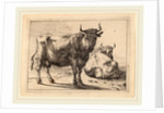A Cow Standing and Another Lying Down, 1650 by Paulus Potter