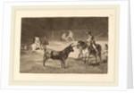 El celebre Fernando del Toro, barilarguero, obligando a la fiera con su garrocha by Francisco de Goya
