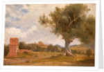 A View at Girgenti in Sicily with the Temple of Concord and Juno, Italy by Charles Lock Eastlake