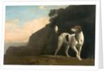 Foxhound A Foxhound by George Stubbs