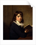 Portrait of a Boy An Unknown Boy by Sir William Beechey