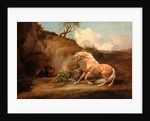Horse Frightened by a Lion by George Stubbs