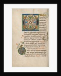 Decorated Initial O, Inhabited Initial D by Anonymous