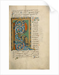 Decorated Initial R by Anonymous