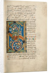 Inhabited Initial S by Anonymous