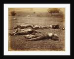 Field Where General Reynolds Fell, Gettysburg by Timothy H. O'Sullivan