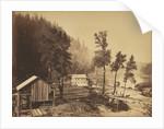 Eagle Creek, Columbia River by Carleton Watkins