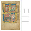 A Man Without Knowledge of Fire, A Man Riding a Crocodile, A Centaur, Sanrus by Anonymous