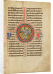 A Falcon within a Cross by Anonymous