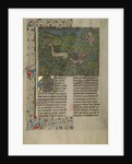 A Hunter and Dogs Pursuing a Fallow Deer by Anonymous