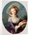 The Vicomtesse de Vaudreuil by Élisabeth Louise Vigée Le Brun