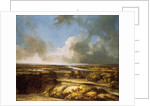 A Panoramic Landscape by Philips Koninck
