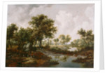 A Wooded Landscape by Meindert Hobbema