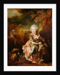 Portrait of a Boy in Fancy Dress by Nicolas de Largillierre