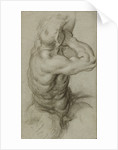 Study of Triton Blowing a Conch Shell (recto), Partial Study of an Arm (verso) by Agostino Carracci
