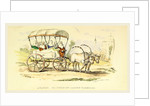 Arabat or Turkish Ladies Carriage, Damascus and Palmyra, a journey to the East by Anonymous