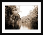 On the Tomoka, Florida, Jackson, Rivers, United States, Florida, Tomoka River, 1880 by William Henry