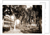 Hotel Rockledge, Indian River, Jackson, Hotel Rockledge (Fla.), Hotels, Palms, Bays, United States, Florida, Indian River, 1880 by William Henry