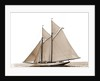 Grayling (Schooner), 1890 by Anonymous