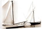 Start, Gossoon and Minerva, Gossoon (Sloop), Minerva (Yacht) by Anonymous