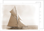 Gloriana (Yacht) by Anonymous