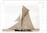 Gracie, Goelet Cup Race, Gracie (Yacht) by Anonymous