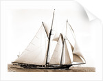 Constellation (Schooner), 1891 by Anonymous