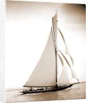 British cutter Calluna by Henry Greenwood Peabody