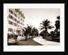 Bicycle Ave, Palm Beach by Anonymous