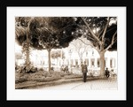 Central park, Havana by Anonymous