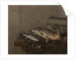 Still life with fish by Pieter van Noort