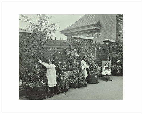 Girls gardening and reading in a roof top garden, White Lion Street School, London, 1912 by Unknown