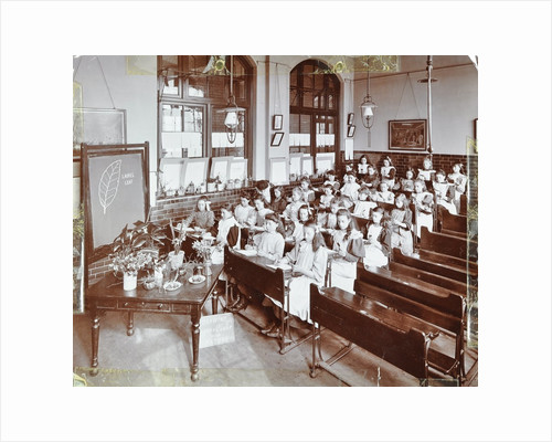 Nature lesson, Albion Street Girls School, Rotherhithe, London, 1908 by Unknown