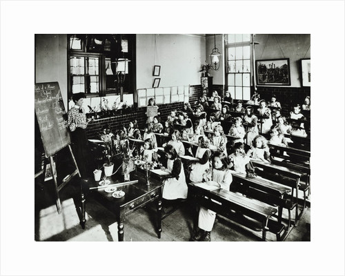 Nature lesson, Class IIIB, Albion Street Girls School, Rotherhithe, London, 1908 by Unknown