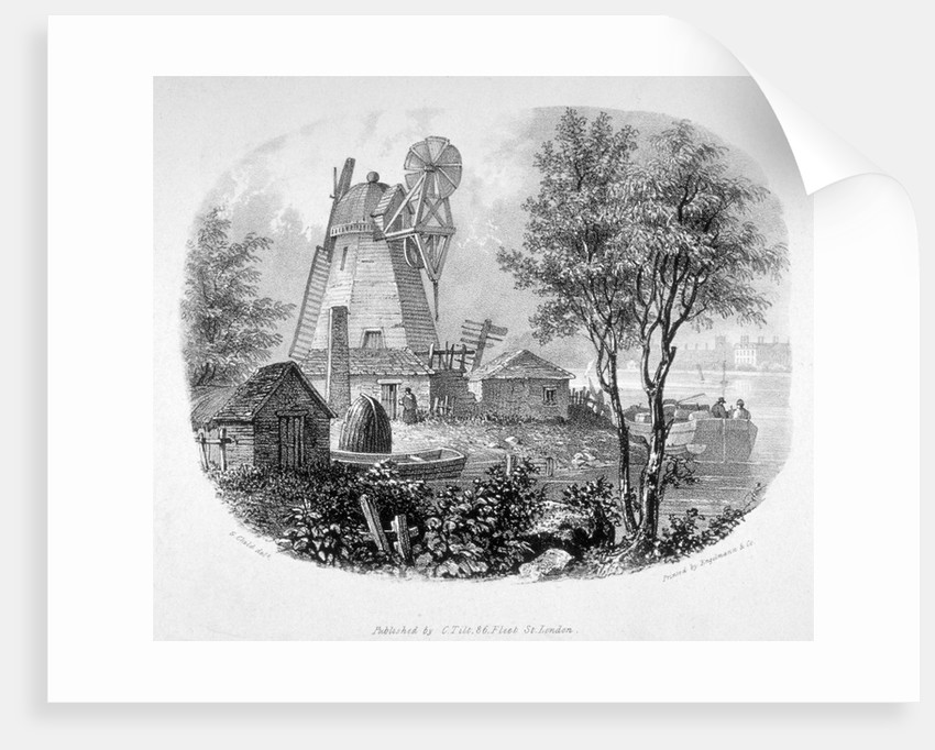 View of a windmill and the River Thames, Battersea, London by Anonymous
