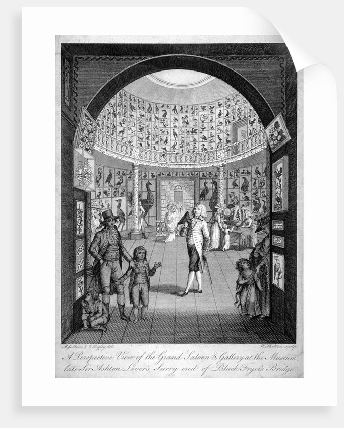 Interior view of the Leverian Museum, Albion Place, Southwark, London by William Skelton