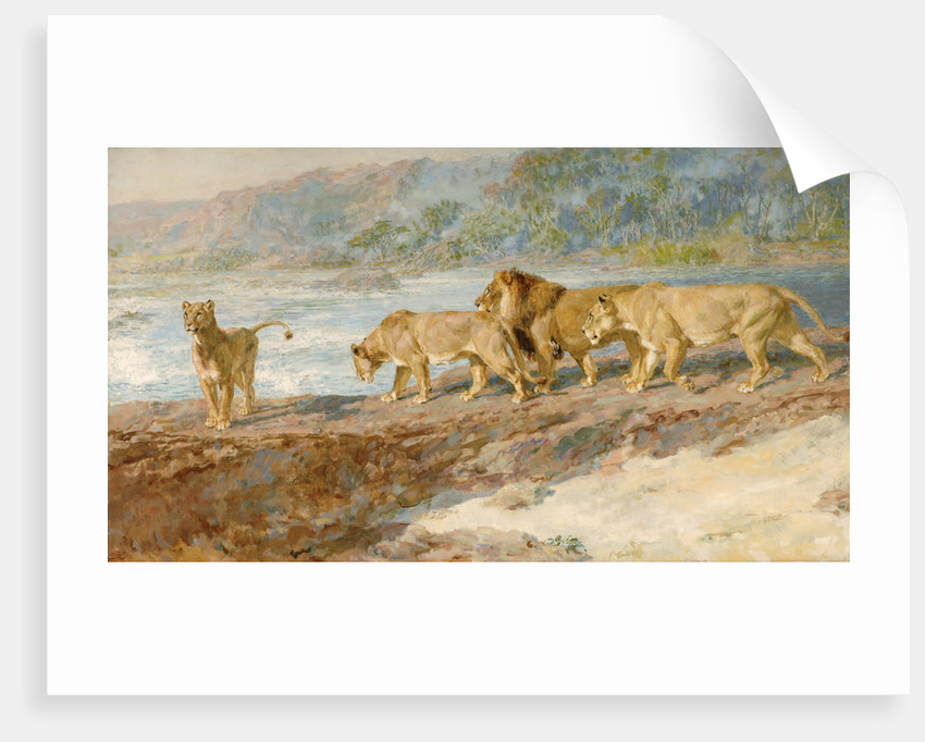 On the bank of an African river by Briton Riviere