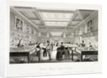 The Zoological Gallery, British Museum, Holborn, London by