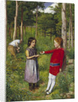 The Woodman's Daughter by